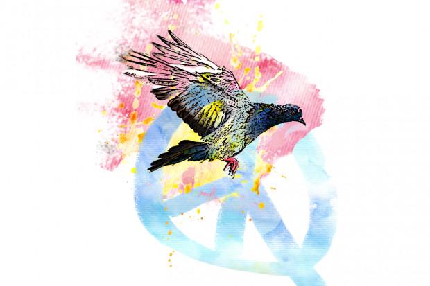 Symbolbild Friedenstaube als Illustration.