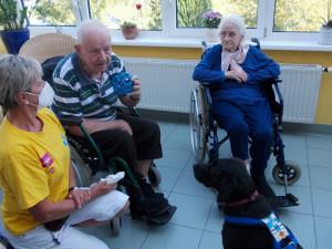 Bewohnerin des ÖJAB-Hauses St. Franziskus streichelt den Therapiebegleithund Nami. Frauchen Maria kniend links.