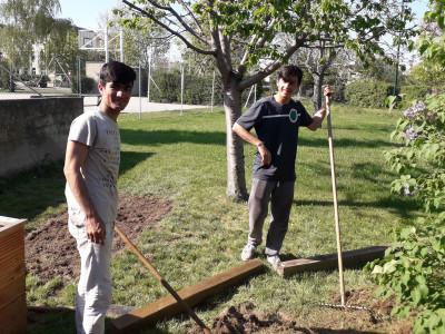 Unbegleitete minderjährige Flüchtlinge bei der gemeinschaftlichen Gartenarbeit.